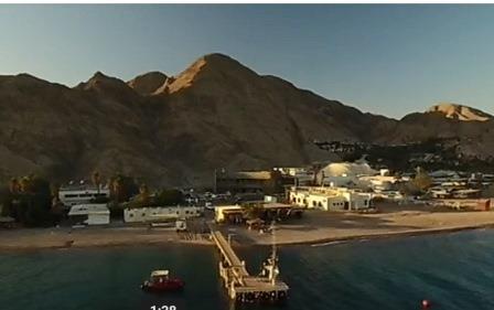 A Eilat, des coraux uniques au monde résistent au réchauffement climatique