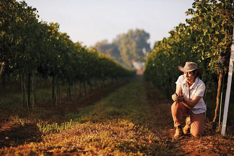 Michal Akerman, la femme qui a déclenché une révolution viticole en Israël