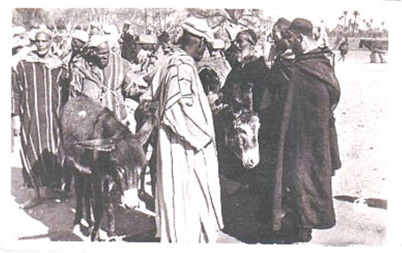 ifrane maroc