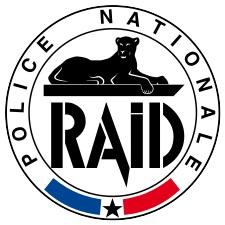 Logo_RAID