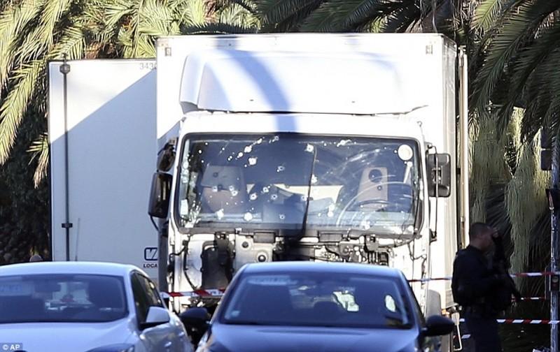 camionice