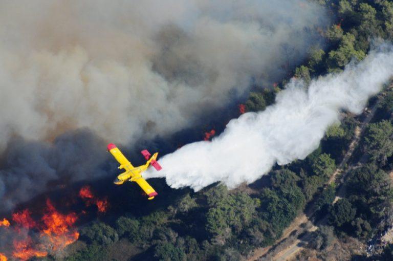 En 2010, l'incendie du Mont Carmel a fait 44 victimes (photo Wikipedia)